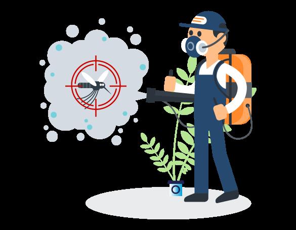 Professional Pest Control Palm Beach, QLD