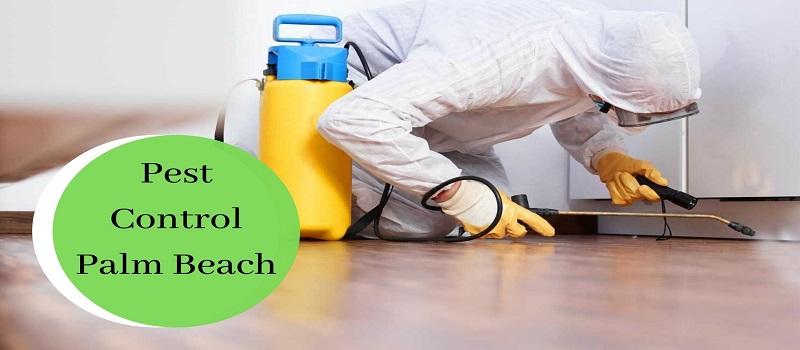 Certified Pest Control Company Palm Beach
